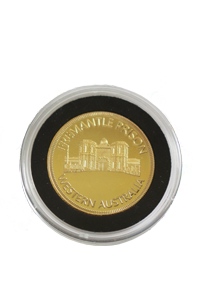 Gold Coin - Capsule - Black - 200x300 .png